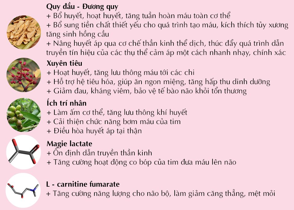 Lợi ích của Hồng Mạch Khang với người bệnh huyết áp thấp